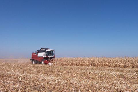 ВестиRU о производственном цикле ГК «Аграрный Донбасс». (Видео)