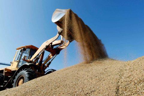 Гендиректор ГК «Аграрный Донбасс» рассказал о возможностях экспорта сельхозпродукции в 2020 году