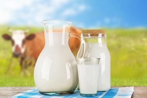 На ГП «Заря Агро» увеличился надой молока