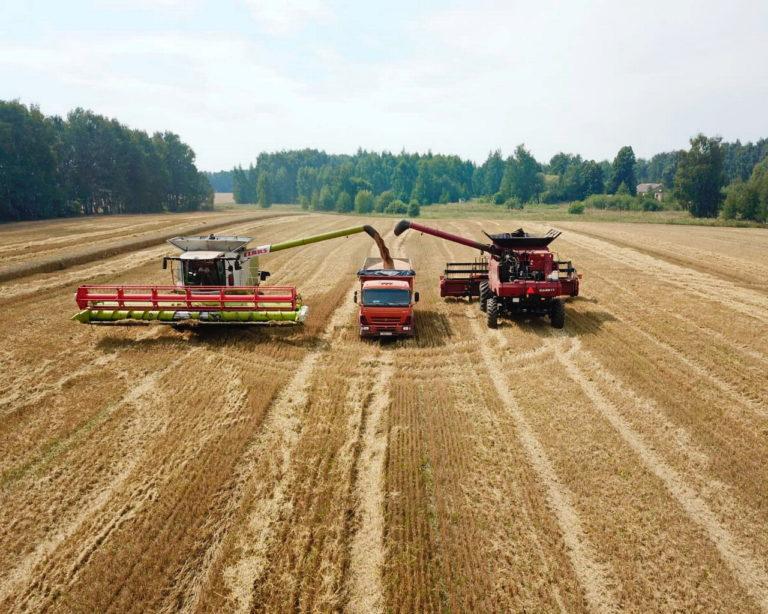 Предприятия, входящие в сферу управления ГК «Аграрный Донбасс», готовы к началу уборочной кампании 2020 (видео)