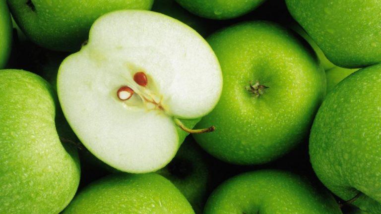 2 октября в продаже появятся яблоки сорта «Ренет Симиренко» из суперинтенсивного яблоневого сада