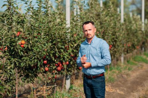 Генеральный директор ГК «Аграрный Донбасс» рассказал, как формируется цена на яблоки (аудио)
