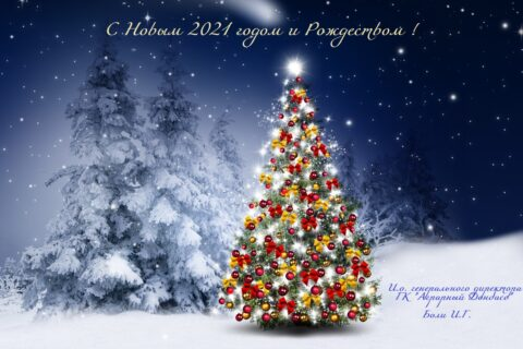 Новогоднее поздравление и. о. генерального директора ГК «Аграрный Донбасс»