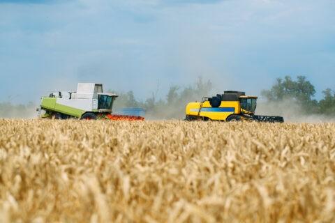 Прайс ГП «Агро-Донбасс» на услуги по обработке земли, посеву, химобработке и уборке сельхозкультур