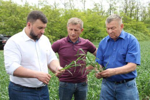 Глава Донецкой Народной Республики Денис Пушилин с рабочей поездкой посетил сельскохозяйственные угодья ГП «Заря Агро»