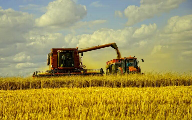 Подразделение ГК «Аграрный Донбасс» завершило уборку ранних зерновых культур